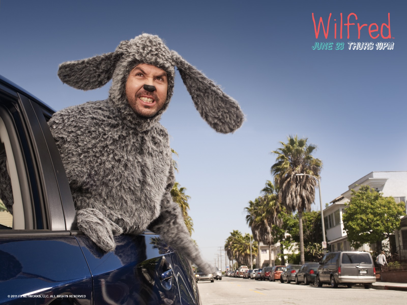Wilfred wallpaper 7